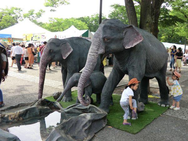 スリランカ・フェスティバル(代々木公園)