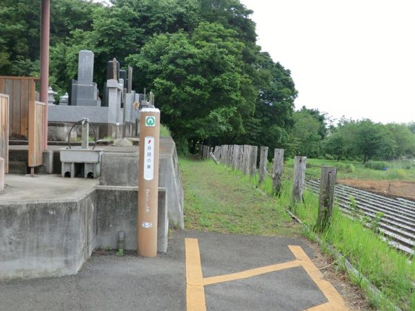入間市・谷田の泉